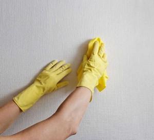 papel de parede - limpeza
